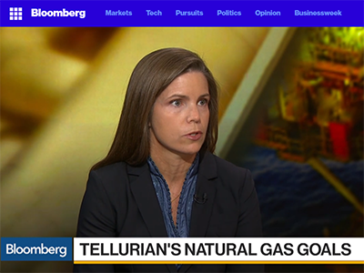 Tellurian CEO on Bechtel Deal and Strategy