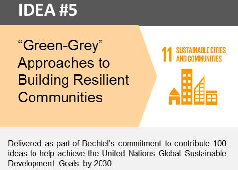"""Green-Grey"" Approaches to Building Resilient Communities"